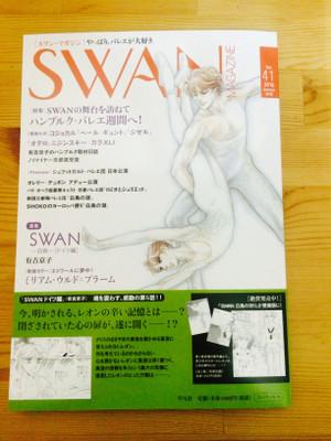 Swan41